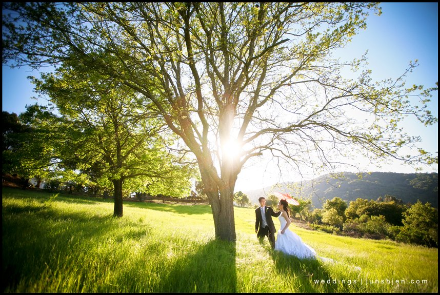 Testarossa Vineyards wedding bridal picture